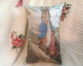 "Beatrix Potter ..12 x 7.5"" Peter Rabbit & the Onions Pillow."