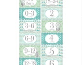 Rectangle Closet Clothes Dividers with Tribal Arrows in Blue, Green and Gray 6 Piece Gift Set for Baby Boys - Easy DIY Project RCD052