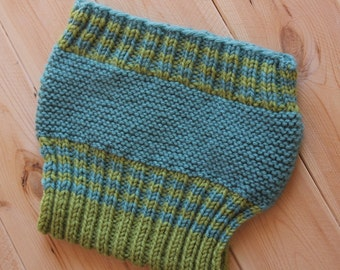 Wool Soakers Green and Blue Diaper Cover