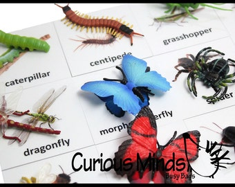 Montessori Insect Animal Match - Miniature Animals with Matching Cards - 2 Part Cards.  Montessori learning toy, language materials