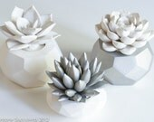 Geometric Nickel Set of 3 Succulents, Tabletop, Desktop, Modern, Home and Office Decor