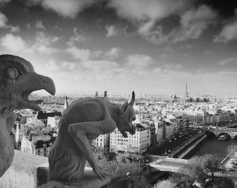 Gargoyle Photography, Paris Photography, Notre Dame Gargoyles, Notre Dame, Gargoyles, Gargoyle Paris, Fine Art Photography, Paris