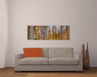 Aspens, Fall, Leaves, Wall Art, Art for over couch, Fall Foliage, Transitions, Metal, Fine Art, Colorado Photography