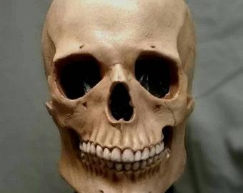 Anatomical Skull mask