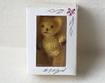 Miniature Golden Bear in Box (JL)