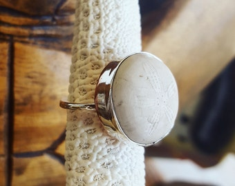 Sand dollar Ring, Mixed metal, SIZE 7/ 7.5  CLEARANCE