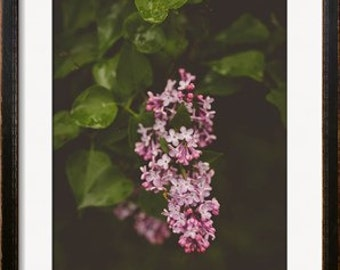 Spring Lilac Photography-Soft Purple Rustic Decor-Floral-
