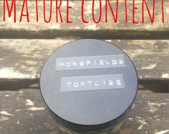 Baby Horsfield's Tortoise. Wet Specimen. Fluid Preserved Lizard. Oddities.
