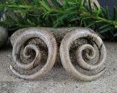 15% OFF SALE 2G  Excellent wooden double spiral   Spiral Organic Ear Gauge, Tribal Gauge, Body Piercing Jewelry L2539