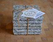 Granite Coaster Set - Maine Black and White Granite - Set of 6