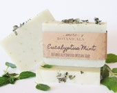 Eucalyptus Mint, Botanically Infused Soap, Natural Soap, Vegan Soap, Palm Oil Free Soap