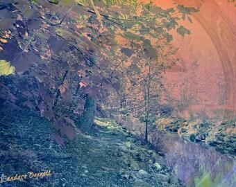 Fall in Fairyland (Fine Print)