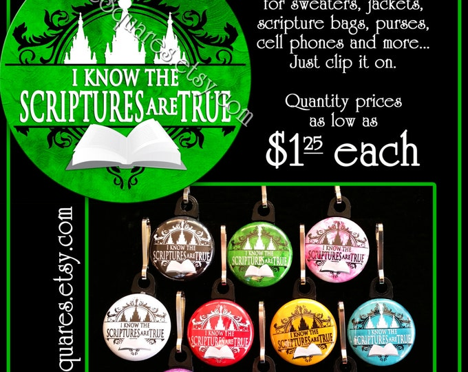 "Zipper Pulls ""I Know The Scriptures Are True"" LDS Gifts - 2016 Primary Theme - Birthdays, Girls Camp, Missionaries Gifts YW Scripture Bag"