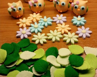 Pastel owls Daisies veined leaves edible cupcake fondant cake decorations cute birthday baby shower