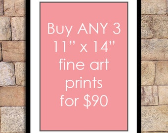 Any 3 - 11x14 prints for this special discounted price - fine art print deal giclee print