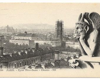 Gargoyle, Notre Dame, Paris Photo Postcard, c. 1910