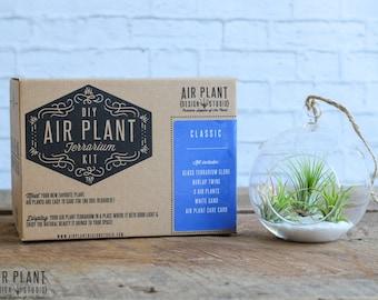 Classic Hanging Air Plant Terrarium - FREE SHIPPING!