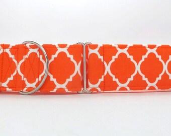 Orange Quatrefoil Dog Collar (Martingale, Buckle, or Tag)
