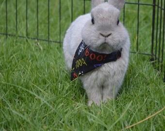 Halloween small animal bandana