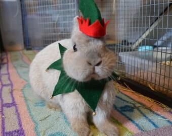 Christmas elf costume for small animal