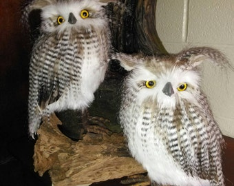Faux taxidermy owls set of 2