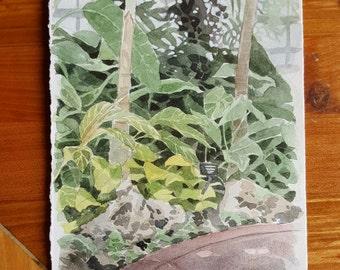 Watercolor Landscape - Lincoln Park Conservatory, Chicago