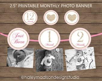 12 month photo birthday banner, Hearts, Valentine birthday, banner decoration DIGITAL FILE