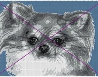 Chihuahua  Blanket Pattern