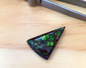 Triangular Ammolite Gem 17.5ct