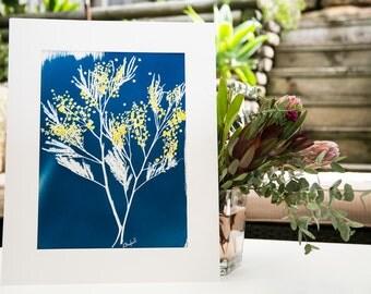 Cyanotype Fine Art Original