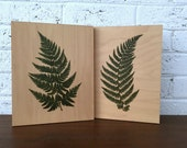 Fern Prints on Wood - Botanical Print Set Wall Art - 8 x 10 Wood Panel Wall Hangings - Cottage Wall Decor - Nature Lover Gift
