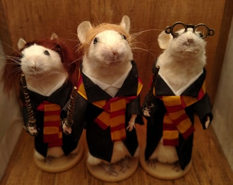 Harry Wizard and friends taxidermy mice