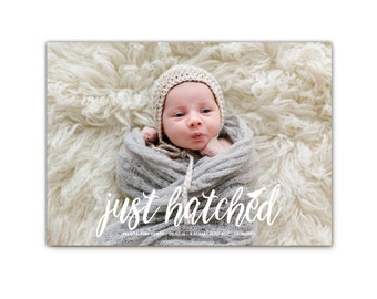 Spring Birth Announcement // Just Hatched  // Photo Baby Announcement // Easter Baby Announcement // The Felicia