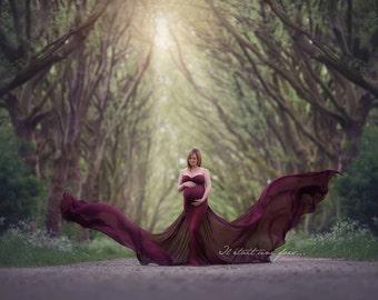 Poppy dress / Maternity gown / photoshoot/ Maternity dress / shoot / maxidress