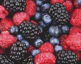Forest Fruit PDF Cross Stitch Pattern