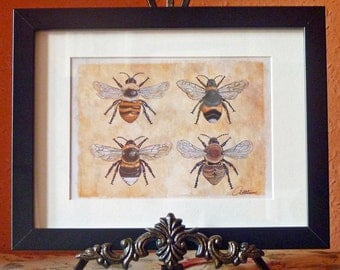 Bee Wall Art Bee Print Framed Bee Picture Bee Art Print Bee Illustrative Artwork Bumble Bees & Carder Bees. A lovely gift for bee lovers