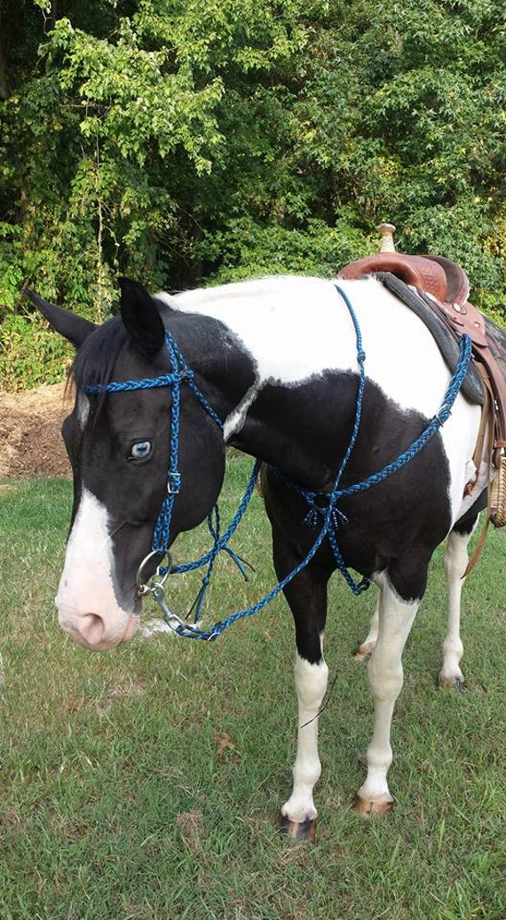 Items similar to paracord horse tack set on etsy for Paracord horse bridle