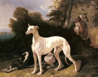 "1696 Alfred Dedreux- A Greyhound-  mid 1800s,  11x14"" Premium photo paper art print, dogs, cannine art, vintage art, FREE ship US"