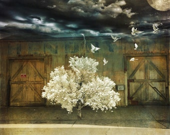 Fine Art Photography, Art Print, Photo Print, digital photo collage, magical realism, surrealistic art