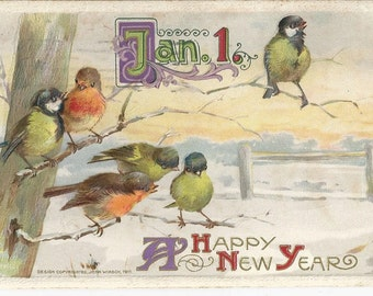 Beautiful 1911 Happy New Year Embossed Postcard BY JOHN WINSCH