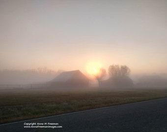 Misty Morning, Mist, Fog, Misty Landscape, Barns, Shed, Early Morning, Farm Landscape, Morning Light, Country Landscape, Rural, Rustic, Art