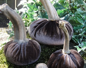 Handmade Plush Mocha Brown velvet pumpkins with real dried pumpkin stems. Velvet acorns with real acorn caps.