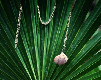 Lilac Wire Wrapped Bahia Shell Necklace