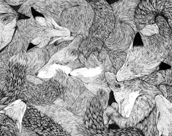 A4 Limited Edition Print of Sleeping Foxes