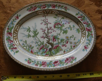 Aynsley China Platter Indian Tree Pattern England
