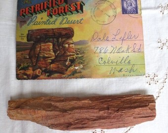 Petrified Forest Painted Desert - Vintage Card Folder AND Real Petrified Wood