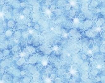 5x5 Blue Winter Snowflake Backdrop for Pro Studio Photography - Fab Vinyl 5x5 ft (FV9026)