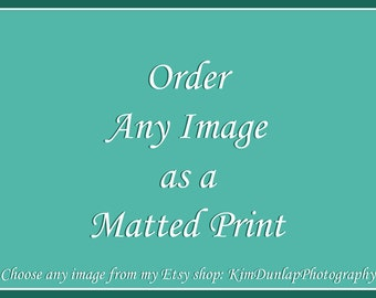 Custom Matted Fine Art Photograph - Order Any Image with a Mat! {Large Wall Decor, Wildlife Photography, Landscape Picture, Photo Artwork}