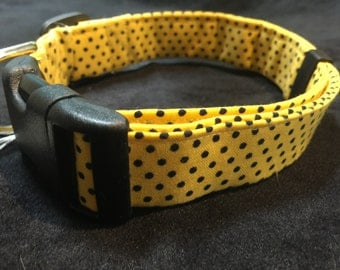 Large yellow and dor collar