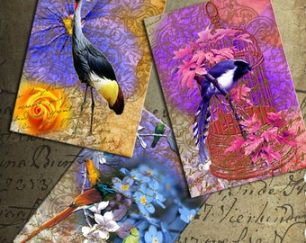 Birds cards - Digital Collage Sheet Printable download 2.5x3.5 inch size Gift tags Jewelry holders Ephemera
